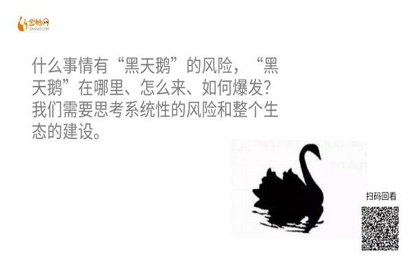 """""""黑天鹅"""""""
